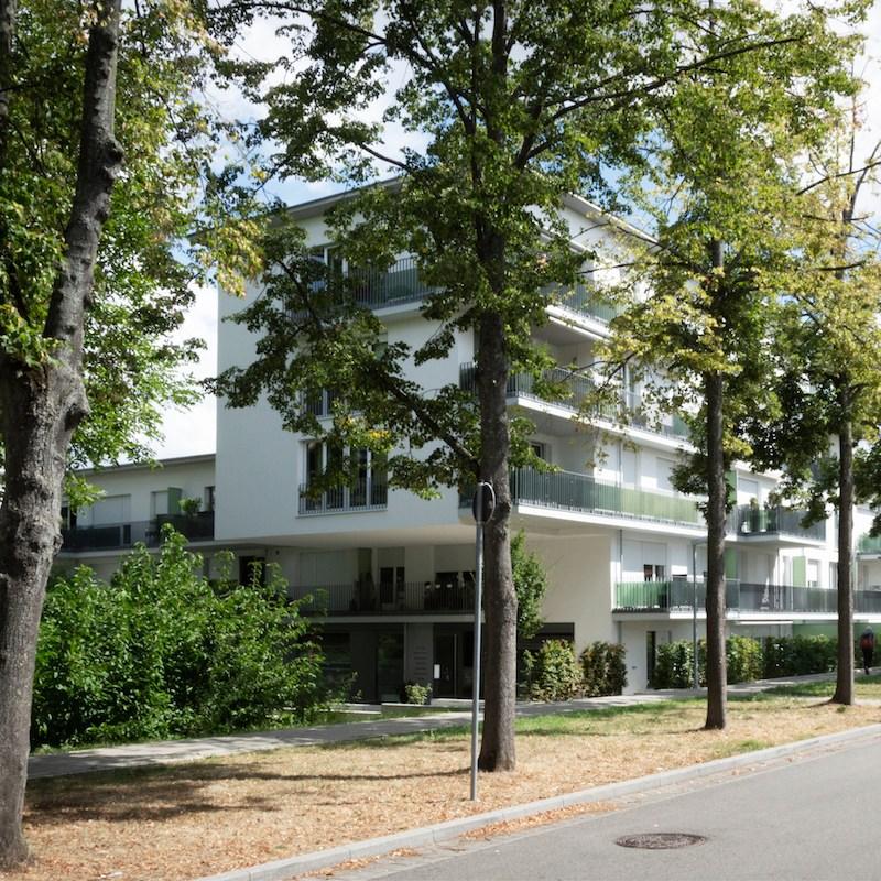 Neubau Wohnen Hartenecker Höhe, Ludwigsburg